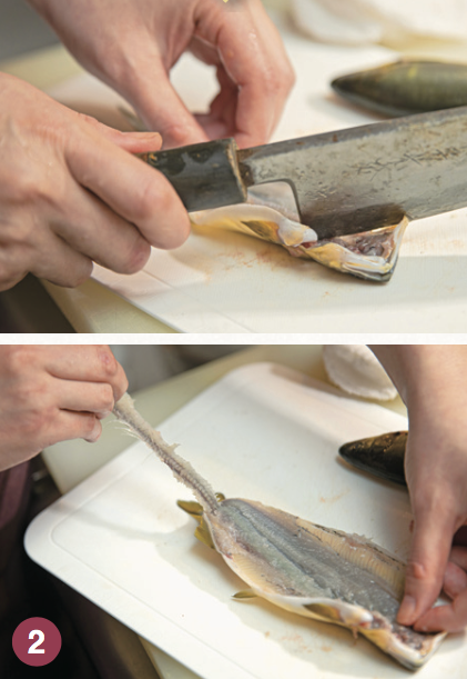 エラ・背ビレを取り、頭周辺や各ヒレ付け根を4~5回包丁で叩いて、硬い骨を砕く。 中骨を取り除く(指で簡単に取れる)。